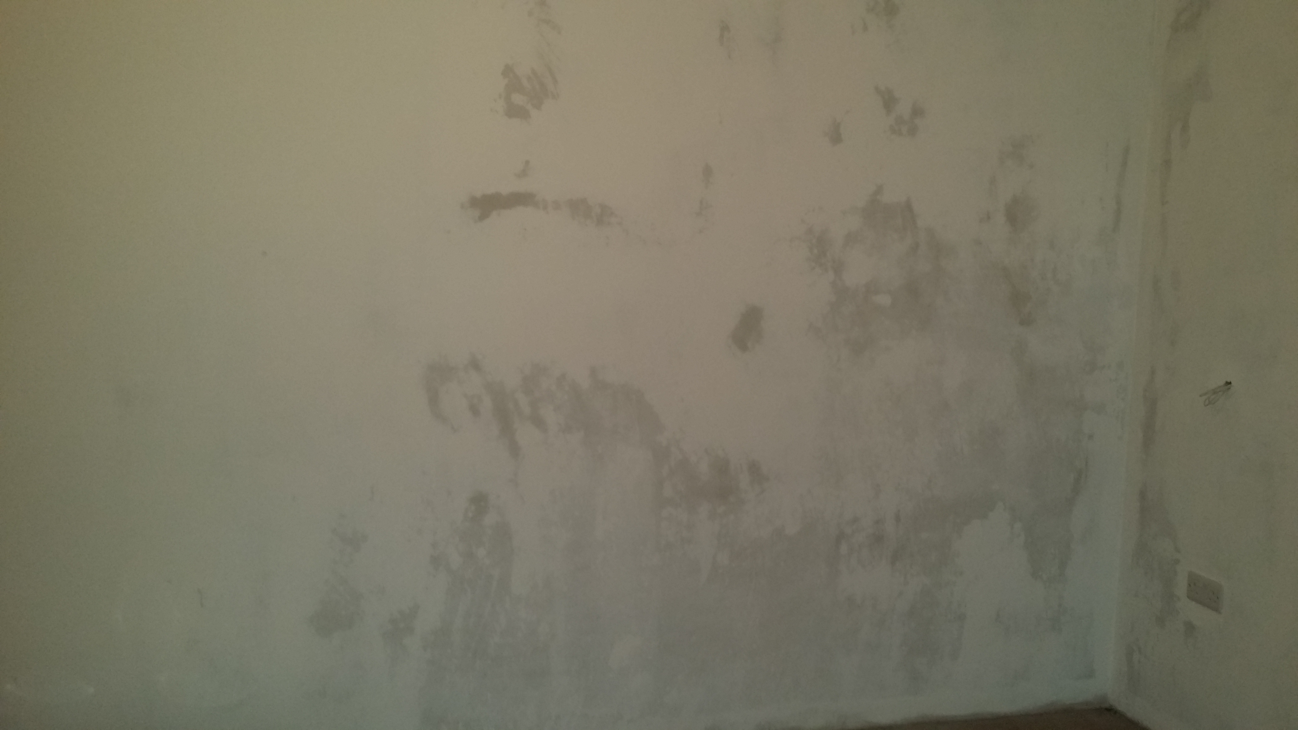 Paint is patchy on newly plastered walls