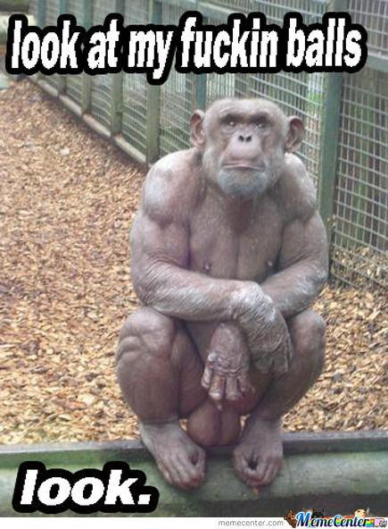 monkey-balls_o_507076.jpg