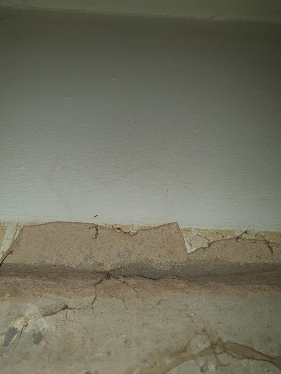 plaster 2.jpg