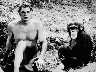 Tarzan-Cheeta-monkey_320.jpg